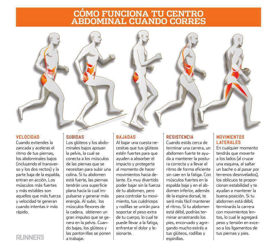 Cómo funciona el centro abdominal cuando corremos